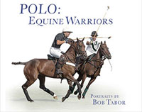 Polo Book Cover